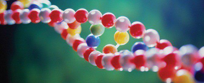 Η αποκωδικοποίηση του DNA. Η απομυθοποίηση.