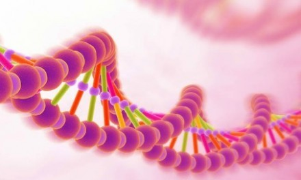 DNA – Λειτουργία της γονιδιακής έκφρασης .