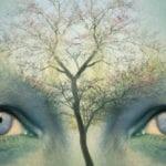 Η εξέλιξη της Ενεργειακής Ψυχολογίας
